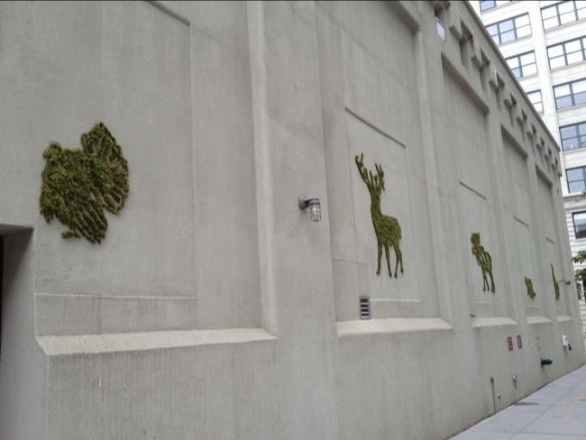 dumbo arts 2012